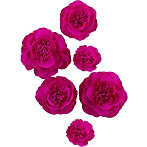 Letjolt Artificial ROSEO Paper Flower Decorations for Wall Wedding Backdrop Homecoming Party Decorations Baby Shower Bridal Shower Nursery Wall Decor(ROSEO Set 6)