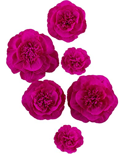 Letjolt Rose Paper Flower Decorations Crepe Paper Peony for Homecoming Dance Backdrop Wedding Party Decorations Baby Shower Bridal Shower Nursery Wall Decor(Set 6)