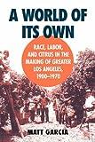 A World of Its Own, Matthew Garcia, 0807849839