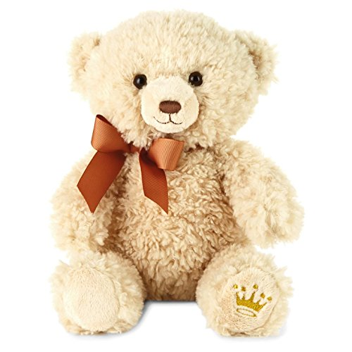 Hallmark Owen A Best Friend Teddy Bear Stuffed -