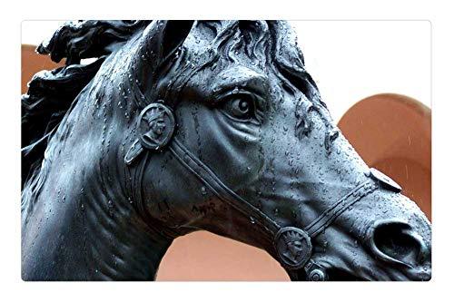 Tree26 Indoor Floor Rug/Mat (23.6 x 15.7 Inch) - Horse Rain Statue Museum Equestrian Art Sarasota