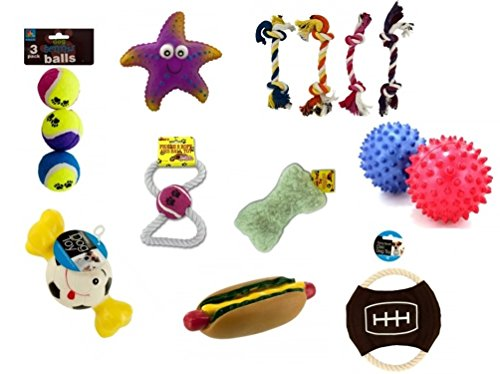 J&J's ToyScape Dog Toys Economy Set (Pack of 15 Toys) Spike Ball, Disc, Squeaking, Rope Play Toys | Gift Pack Pet Puppies Review