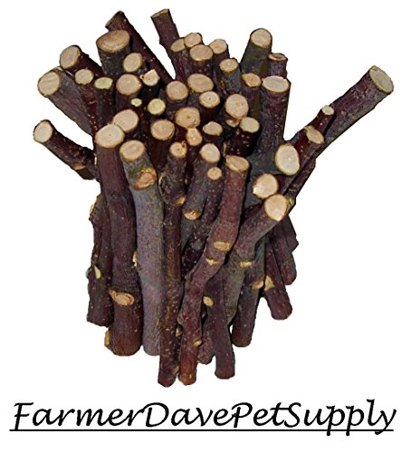 - FarmerDavePetSupply 45 Apple Chew Stick Bonus Pack for Small Animals