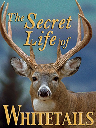 The Secret Life of Whitetails ()