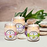 Scented Candles (Lemongrass & Peach & Lilac) - 3 x 8.5-Ounce Soy Candles - Pet Odor Exterminator Candle with Natural Essential Oil (Set Gift of 3)
