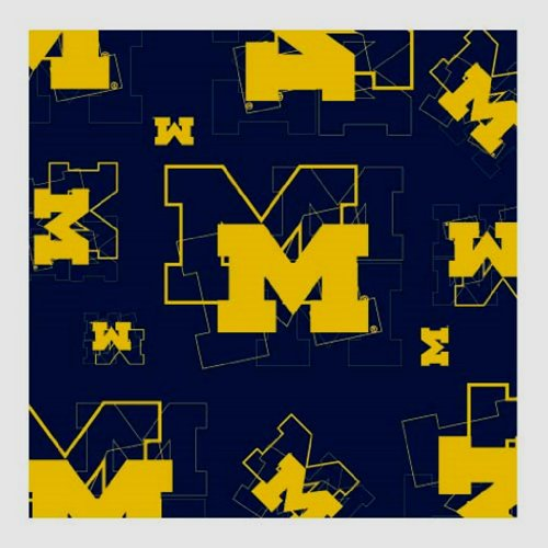 NCAA Michigan Wolverines Logo & Symbol Blue Silk Scarf Polyester New With Tags ()