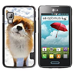 Qstar Arte & diseño plástico duro Fundas Cover Cubre Hard Case Cover para LG Optimus L5 II Dual E455 / E460 / Optimus Duet ( Cute Arctic Snow Fox Orange Goofy Animal)