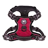 PoyPet No Pull Dog Harness with 4 Buckles(Red,XS)