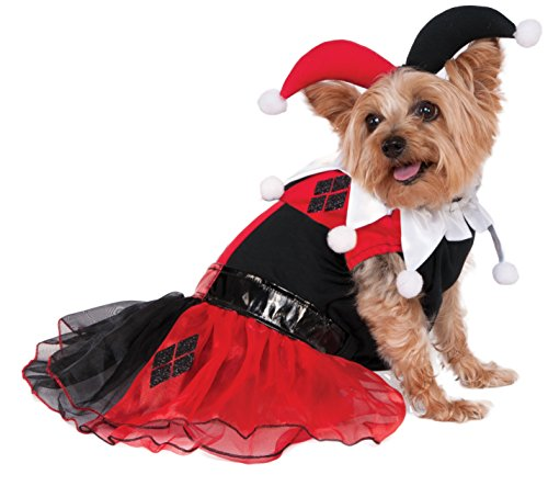 A Specific Part Of Batman Costume (Rubies Costume DC Comics Harley Quinn Pet Costume, X-Large)