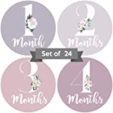 Baby Monthly Stickers   Floral Baby Milestone Stickers   Newborn Girl Stickers   Month Stickers for Baby Girl   Baby…