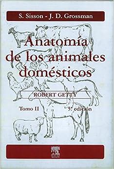 Como Descargar De Mejortorrent Anatomía De Los Animales Domésticos. Tomo Ii Falco Epub