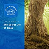 Download The Secret Life of Trees in PDF ePUB Free Online