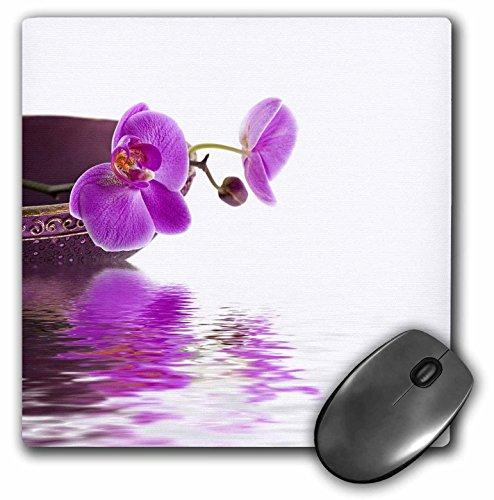 3dRose - Alfombrilla de mouse con diseño de orquídea y flor de estilo zen con fotografía de agua, 8 x 8 pulgadas...