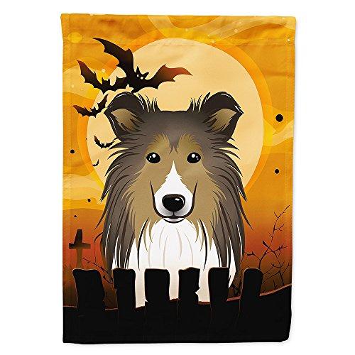 Caroline's Treasures BB1800CHF Halloween Sheltie Canvas House Size Flag, Multicolor, Large]()