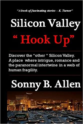 silicon valley hook up