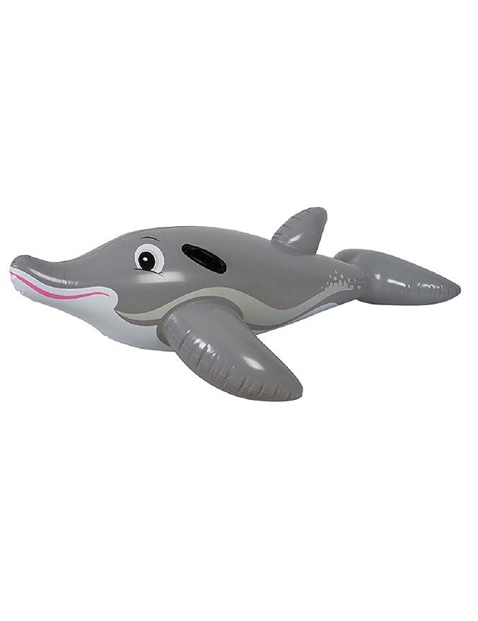 Jilong Air Rider - Piscina infantil hinchable para niños, diseño de delfín de cocodrilo, juguete flotante: Amazon.es: Jardín
