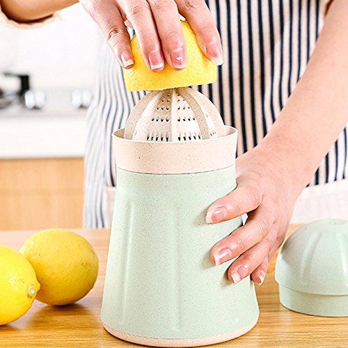 Compra PengYuan Manual portátil exprimidor de Limones hogar Mano ...