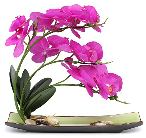 NNEE Artificial Phalaenopsis Orchid Arrangement with Decorative Flower Pot - Purple Orchild A325 by NNEE