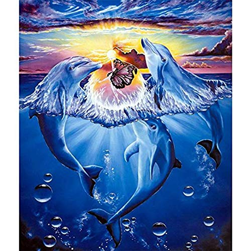 Diamond Painting Kits for Adults, Kids. Office Decoration, Home Room Dolphin Fights Butterfly 11.8x15.7in 1 by Aimerson