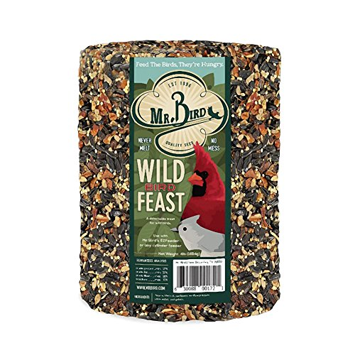 Mr. Bird Wild Bird Feast Birdseed Large Cylinder 4 lbs. (Cylinder Bird Feeder)