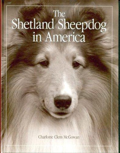 The Shetland Sheepdog in America