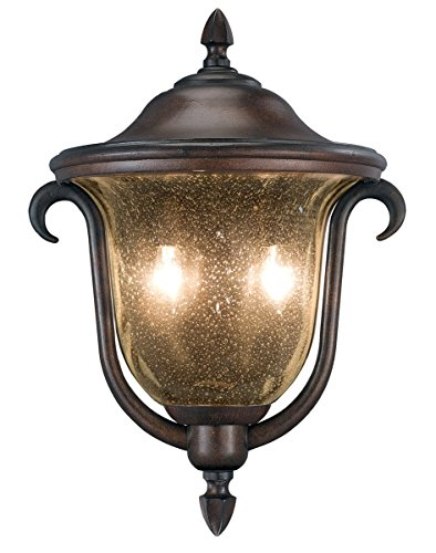 Outdoor Wall Sconces 2 Light with Burnished Bronze Finish Candelabra Base Bulb 13 inch 80 Watts