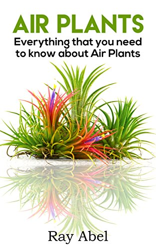 air-plants-everything-that-you-need-to-know-about-air-plants-in-a-single-book-air-plants-air-plant-c