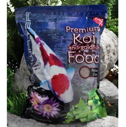 Blackwater Creek Color Koi Fish Food - 40 lbs. (Medium Pellet) with Exclusive BONUS Max Ponds Calendar Magnet by Blackwater Creek