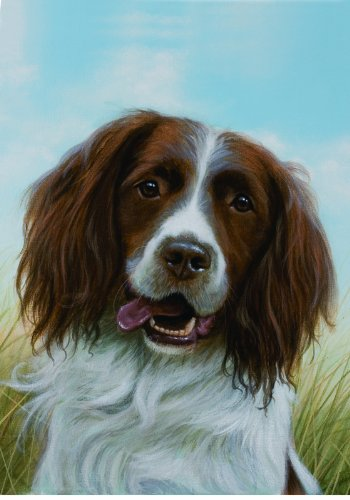 Best of Breed English Springer Spaniel Liver/White - John Silver Garden Flag