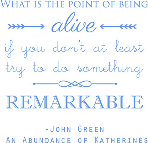 (What is the point of being alive' - John Green - Saying Vinyl Wall Decal Quote Art - Craft Room Sticker - 20