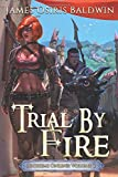 Trial by Fire: A LitRPG Dragonrider Adventure (Archemi Online Chronicles)