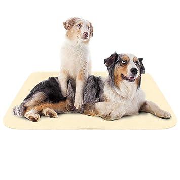 Hero Dog Colchoneta Grande Suave para Perros - 100% Lavable A Máquina, Colchón Antideslizante De Beige XL