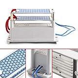 Ozone Generator, 10g/h AC 110V Poratable Ozone