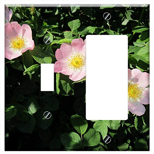 (1-Toggle 1-Rocker/GFCI Combination Wall Plate Cover - Rosa Canina Dog-Rose Wildflower Shrub Flora B)