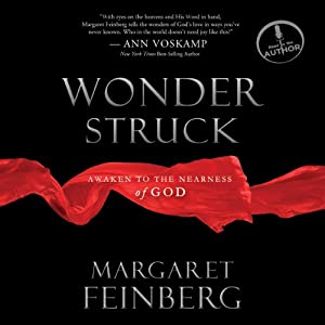 Wonderstruck Audiobook
