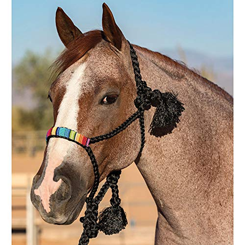 Professional's Choice Beaded Halter with a 10 Lead ()