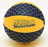 Michigan Wolverines Fun Gripper 5.5 Mini Basketball NCAA
