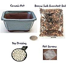 Succulent Potting Kit(4 inch). Ceramic Bonsai Clay Pot, Soil, Screens and Top Dressing. 6 Pot Colors - Vintage Blue Rectangular Clipped Corner