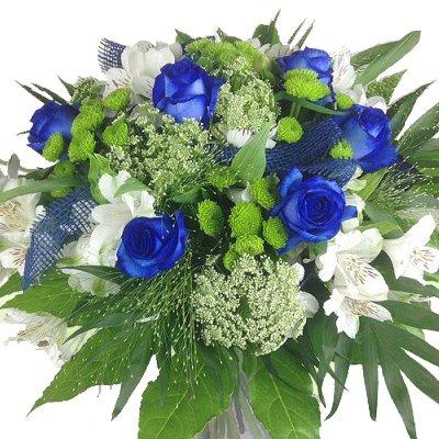 Premium Blumenstrau/ß blau-wei/ß Blumenversand Rosenbote
