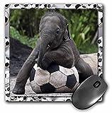3dRose LLC 8 x 8 x 0.25 Inches Mouse Pad, Elephant Soccer (mp_36485_1)