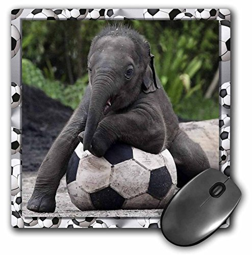 3dRose LLC 8 x 8 x 0.25 Inches Mouse Pad, Elephant Soccer (mp_36485_1) by 3dRose