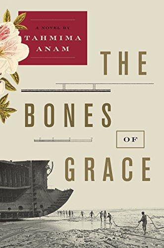 The Bones of Grace: A Novel pdf
