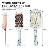 Hair Brush Set - Paddle Brush, Round Blow Drying