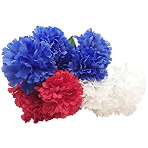 Red, White and Blue Floral Garden Patriotic Flower Bushes, 16.25 in. 73