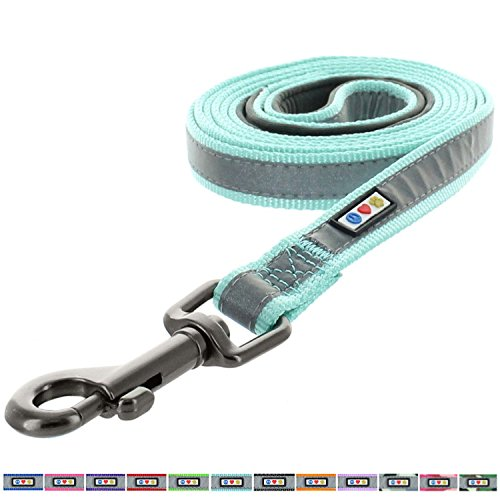 Pawtitas Padded Dog Leash Puppy Leash Reflective Dog Leash Padded Handle Highly Reflective Dog Training Leash 6 ft Leash Teal Leash Extra Small Dog Leash/Small Dog Leash Teal Dog Leash