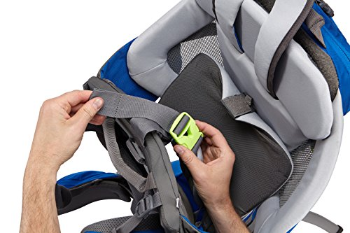 Thule Sapling Child Carrier, Slate/Cobalt by Thule (Image #14)