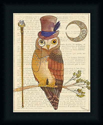 Steampunk Owl II Elyse DeNeige Monocle Illustration Art Print Framed Picture Wall Décor Artwork