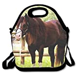 Lightweight Beautiful Arabian Horse Lunch Bag Lunch Box Handbag 3D Animal Prints For Kids And Adults