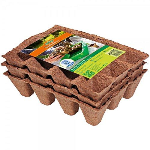Romberg 71005 Vasetti Propagatori 5 cm, Quadrati, 36 pezzi