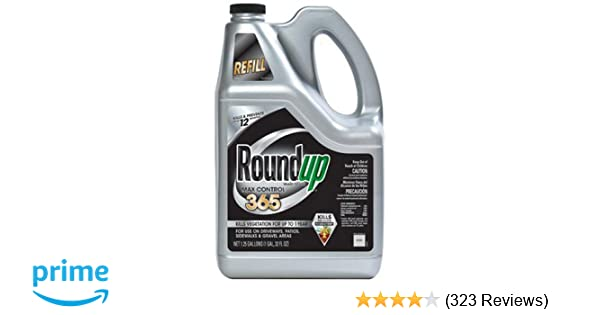 Amazon.com : Roundup Max Control 365 Ready-to-Use Refill for Comfort Wand Sprayer, 1.25-Gallon (Weed Killer Plus Weed Preventer) (Not Sold in NY) : Garden & ...